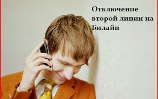 Как отключить вторую телефонную линию Билайн